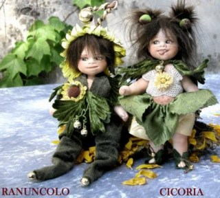 CICORIA-RANUNCOLOg_so.jpg